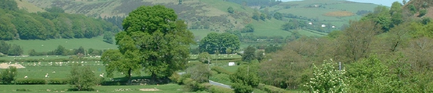 Radnor Valley in Summer